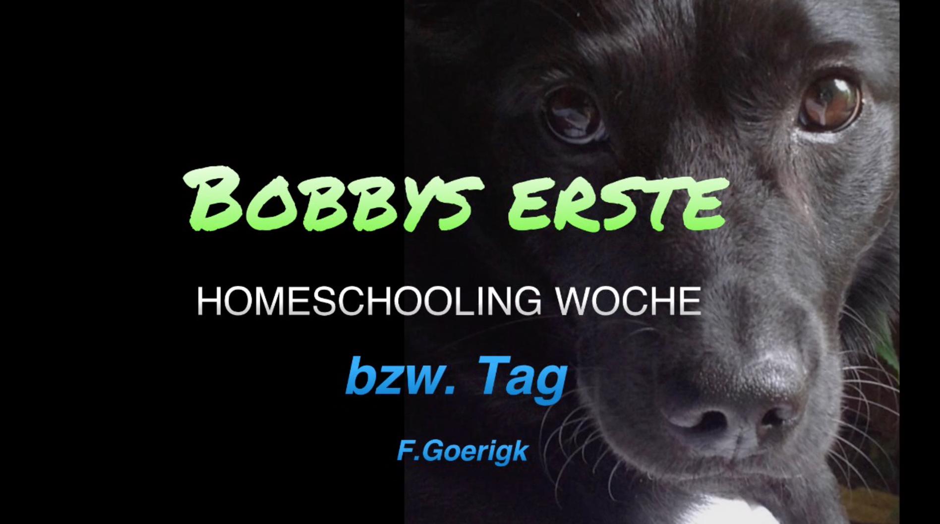 Bobby berichtet vom Homeschooling!