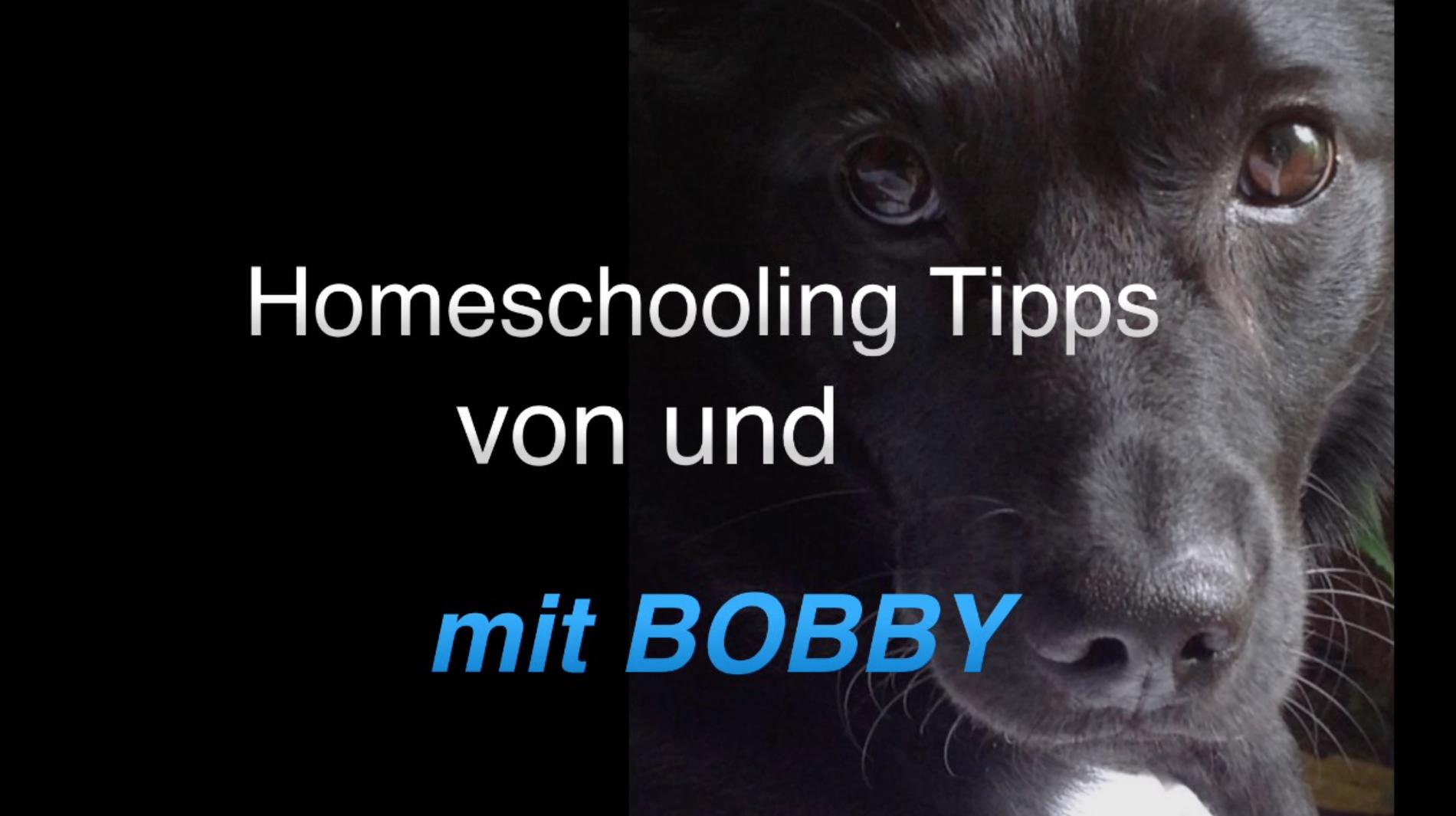 Bobby gibt wertvolle Tipps zum Homeschooling!